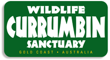 Currumbin Wildlife Sanctuary Coupon & Deals