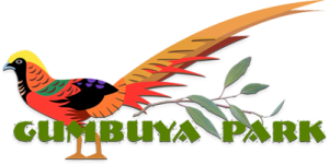 Gumbuya Park Voucher & Deals