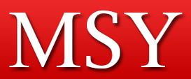 MSY discount codes