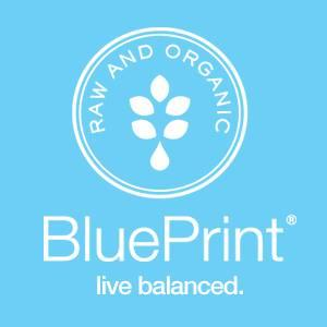 Blueprint discount codes