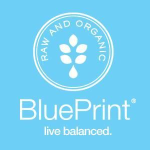 Blueprint discount codes